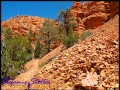 Trail im Red Canyon